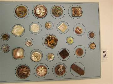 542: 1 Card, Shells, 25