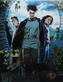 Radcliffe / Watson / grint HARRY POTTER 11x14 IP Signed