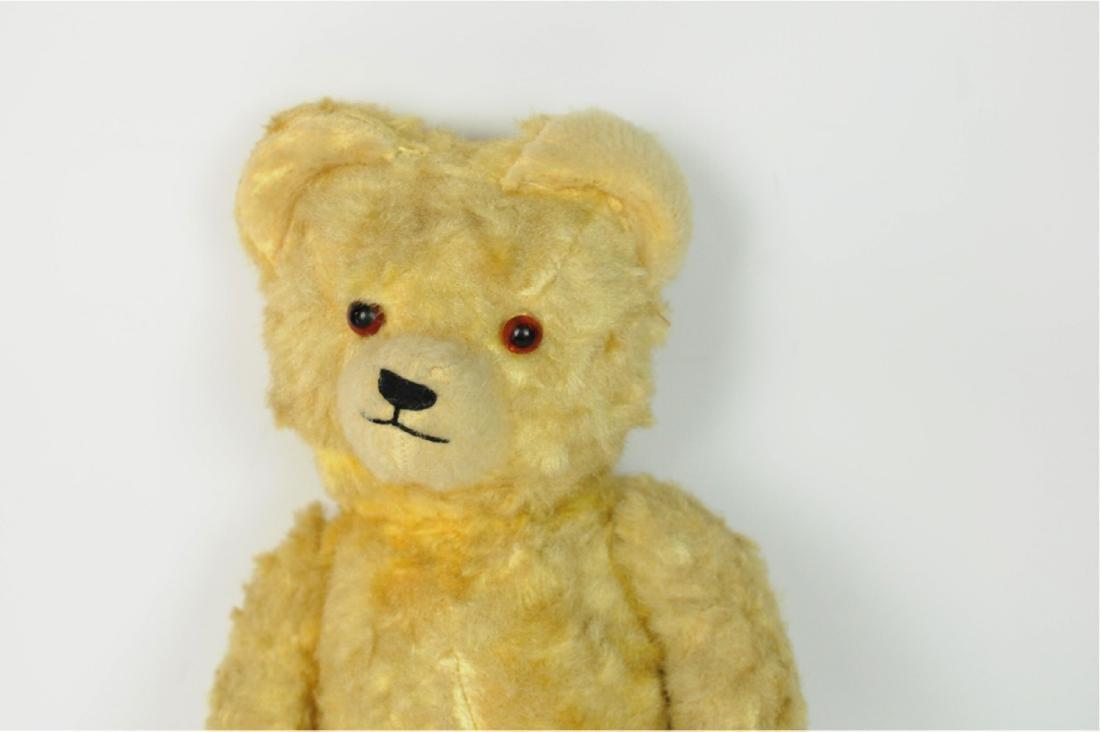 Steiff Mohair Glass Eyes Golden Teddy Bear 1890's - 3
