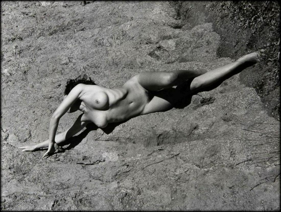 Nude photos of the nibblz