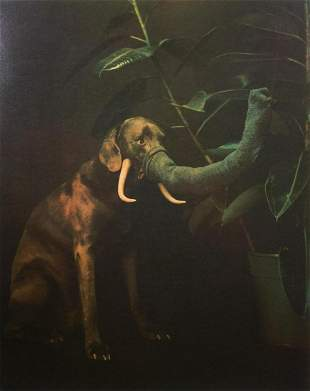 WILLIAM WEGMAN, Elephant 1988 SIGNED/# Silkscreen