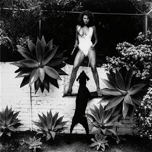 Helmut Newton, Raquel Welch 1981, Silver Gelatin with