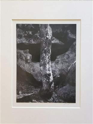 Ansel Adams, Castle Rock 1963 Hand signed gelatin