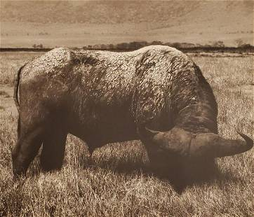 HERB RITTS, Africa - 38, 1993, Photo Engraving