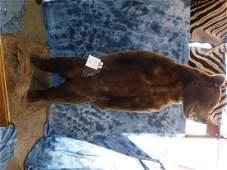 9' HUGE BROWN BEAR STANDING ON REAR LEGS
