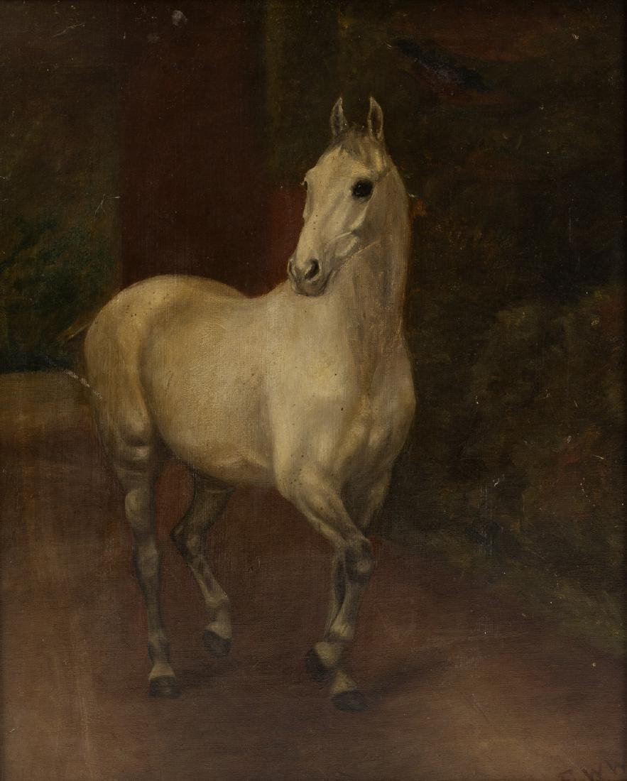 English School circa 1900/Study of a Grey