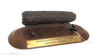 DeKalb Achievement Program trophy