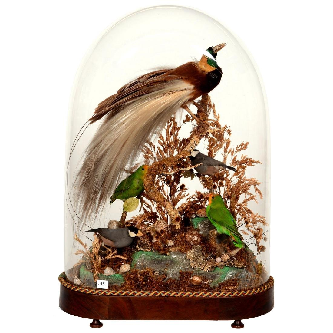 Early Victorian Glass Dome
