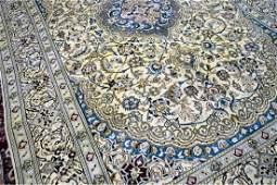 Persian Nain