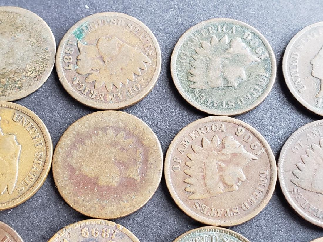 24 Indian Head Cents - 3