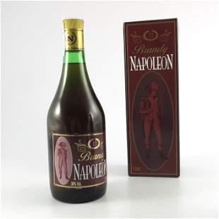 Napoleon Brandy by Antonio Nadal cased 100cl