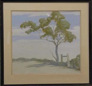 John Jensen Australia Tree and Styl