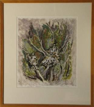Patricia Giles 1932 Australia Lichen and Cythodes