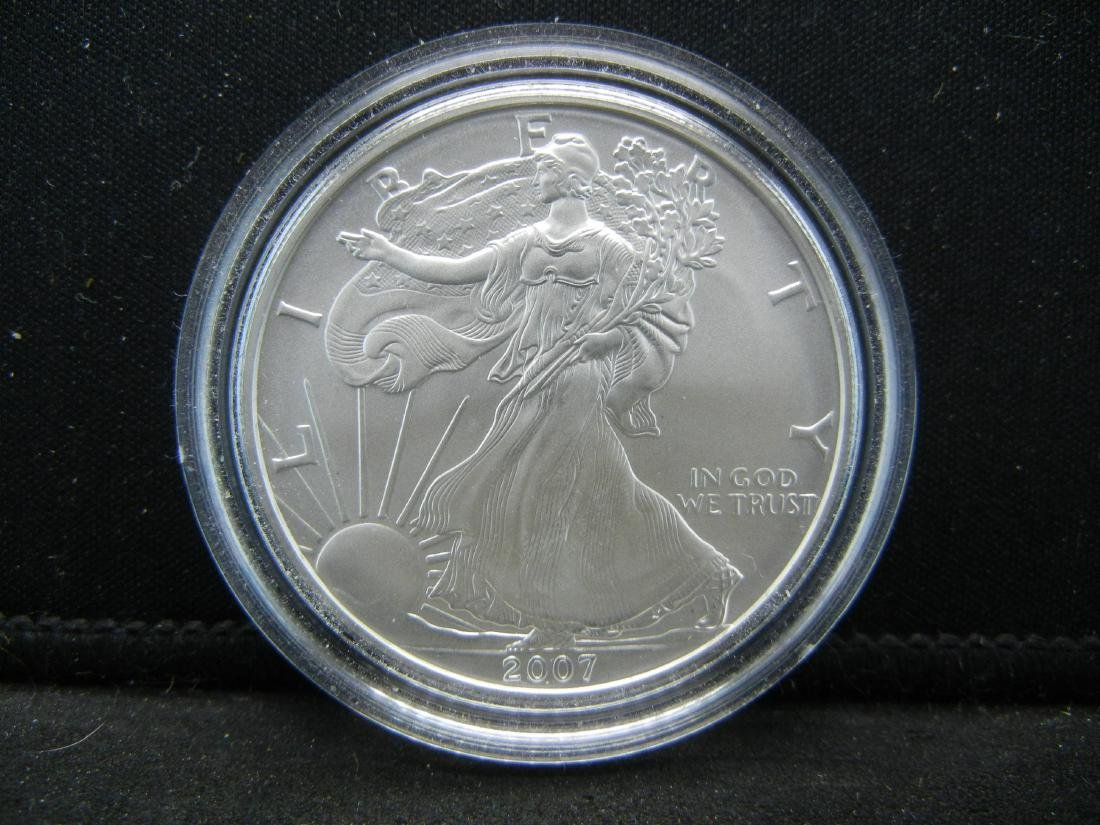 2007 W Burnished Surface American Silver Eagle in - 2