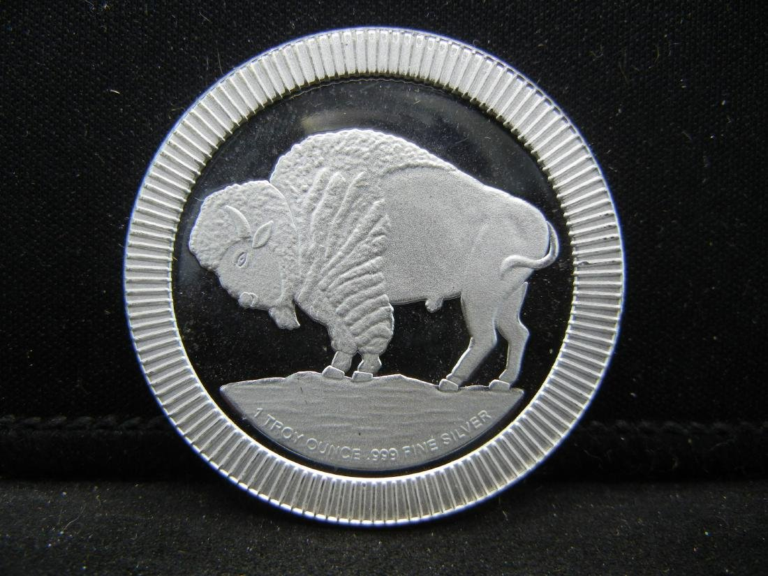 1 Ounce .999 Fine Silver Indian Head Round - 2