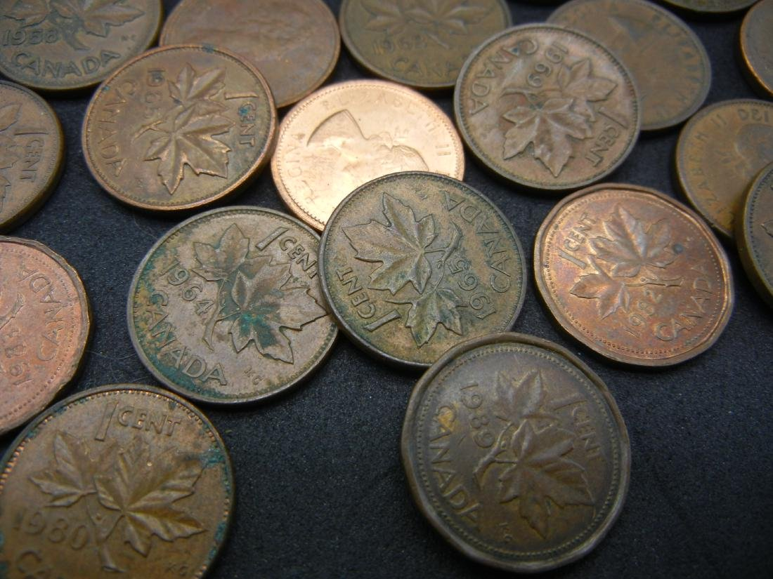 Roll of 50 Canadian Copper Cents Dated Before 1997. - 3