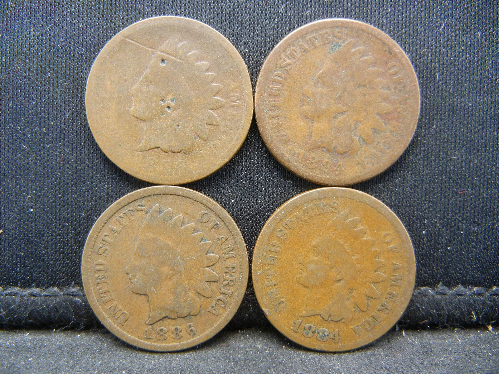 (2) 1884 and (2) 1886 Indian Head Cents ave Circ