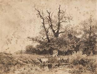 TOMS CAMPUZANO Landscape
