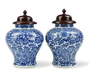 Pair of Chinese Blue & White Jars ,Kangxi Period