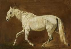 Trotting White Horse