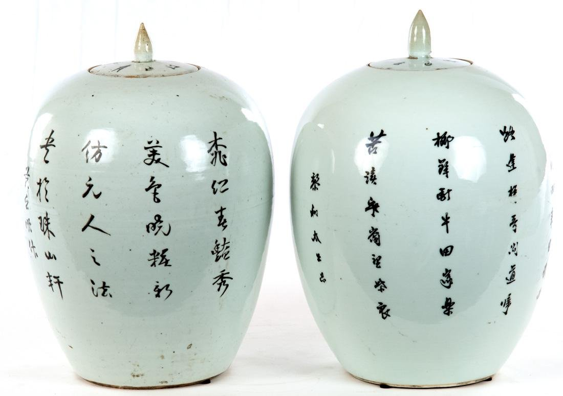 Pair of Famille Verte Chinese Vases c. 1900 - 2