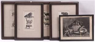 Five Framed Animal Prints