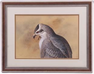Fred Wetzel American Gouache Hawk