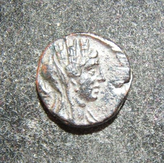 Ancient Phoenicia/Tyre AE coin AD 77/8, Tyche/Palm