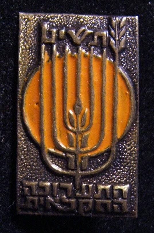 Colored participation stick-pin of 1959 Rishon LeZion