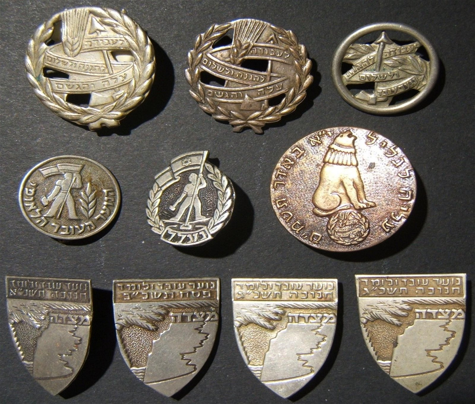 Lot 10x pins & badges of the Israeli Working & Learning