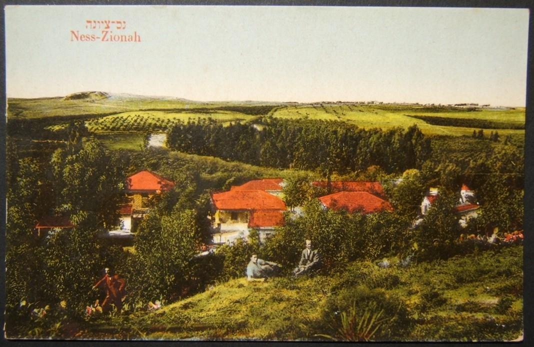 Vintage Eretz Israel color picture postcard