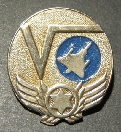 Israeli Airforce/IAF pin Unit 180 computing &