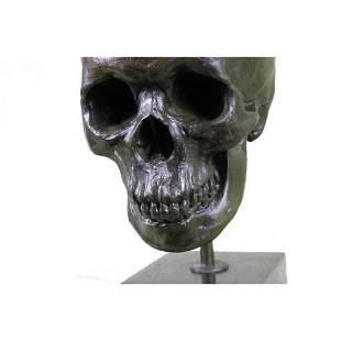 Signed American Artist Skeleton Head Bust Bone