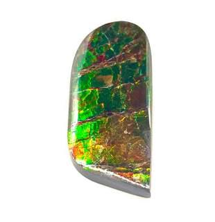 Freeform Ammolite Panel