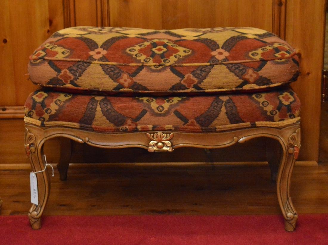 Louis XV Style Bergere With Ottoman - 3