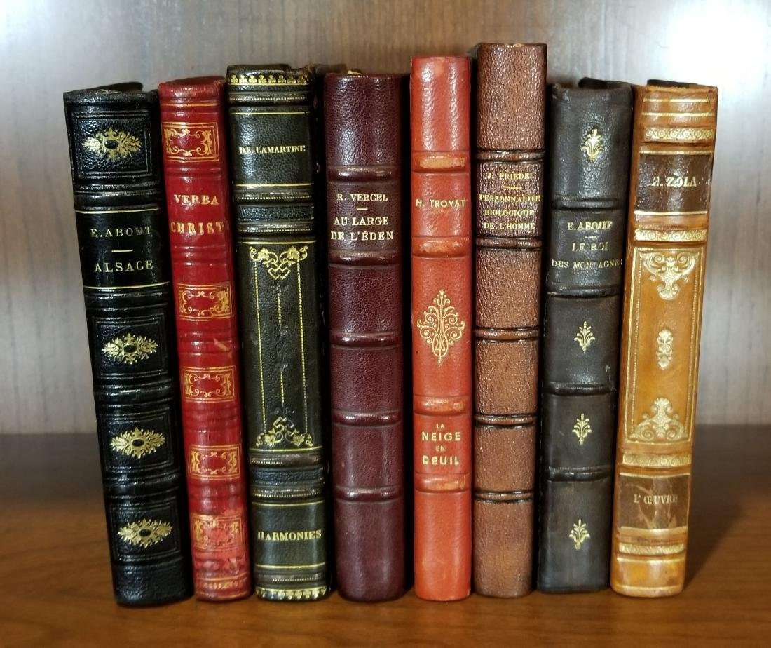 Decorative French Leather Bound Books (8)