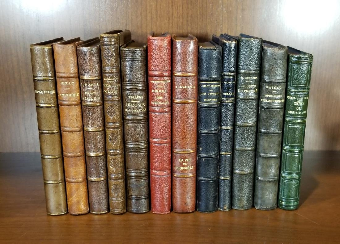 Decorative French Leather Bound Books (12)