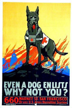 1183: Even a Dog Enlists / Why Not You?
