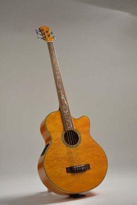 Michael Kelly 5-string Acoustic Bass, Robert Yelin