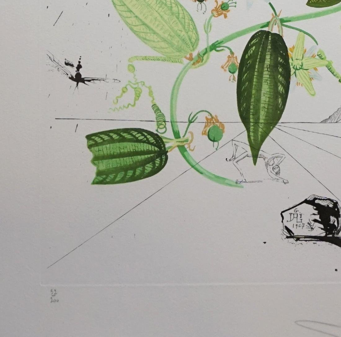 Dali Flora Dalinae Passionflower Hand Signed Etching - 3