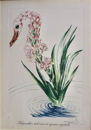Salvador Dali Florals Water-Hibiscus Swan