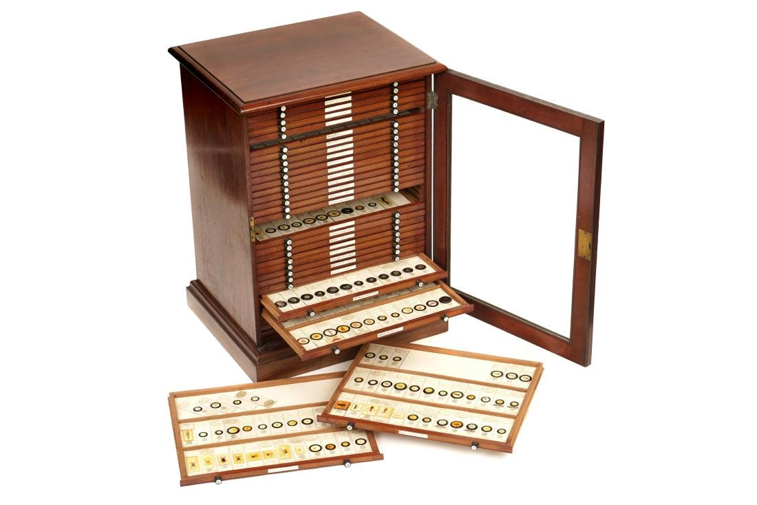 A Large Cabinet of Microscope Slides,