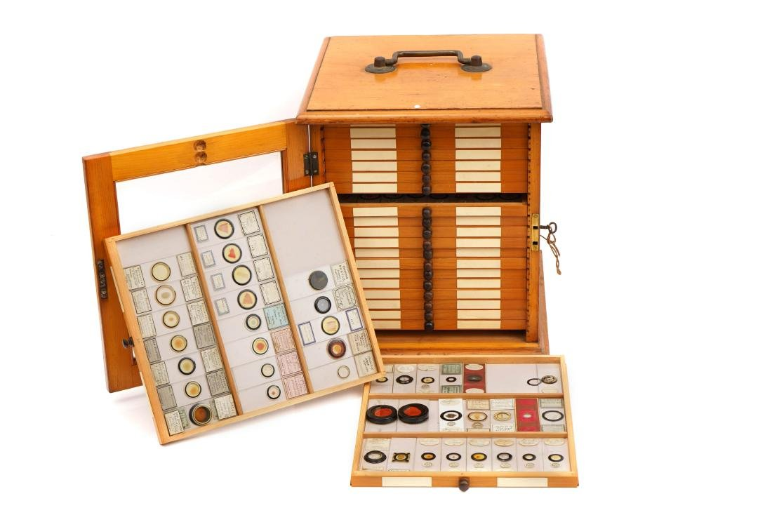 A Large Polished Pine Cabinet of Microscope Slides,
