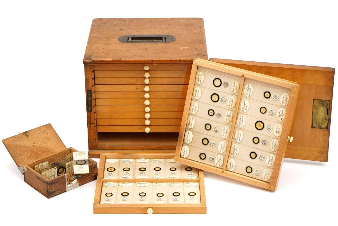 A Polished Pine Cabinet of Diatom Microscope Slides,
