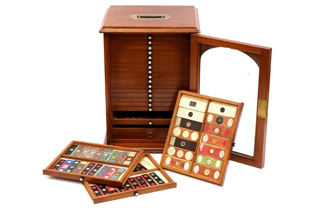 A Cabinet of Microscope Slides,