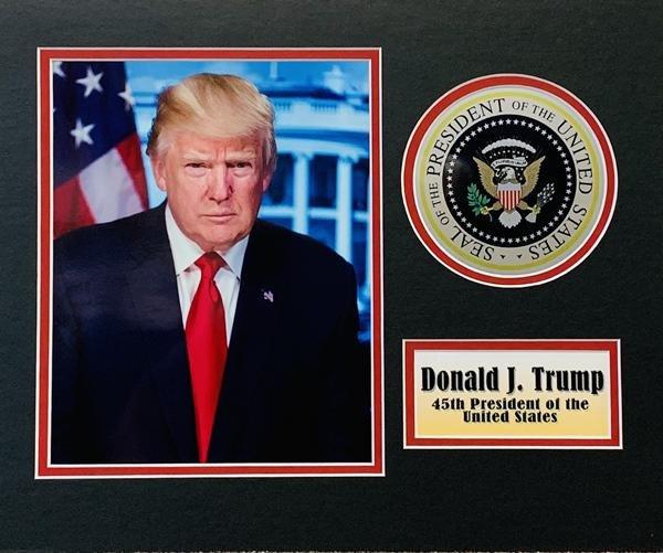 Framed Donald Trump