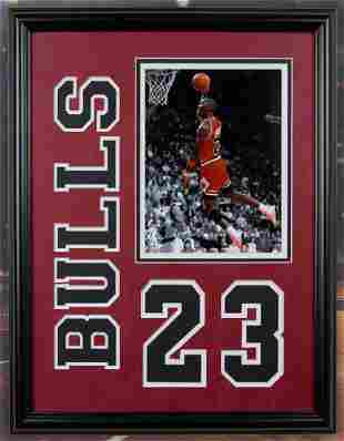 Michael Jordan Chicage Bulls 20x16 photofile unsigned