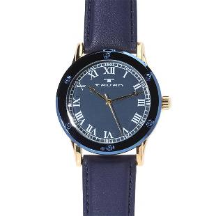 Tavan Sophisticate Gold and Blue Mens Watch