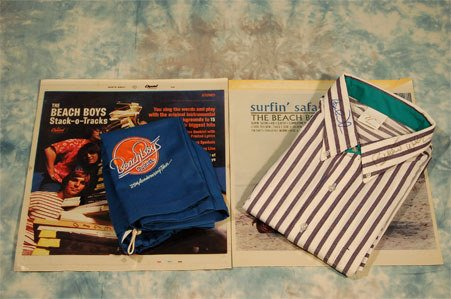 "5: Beach Boys. A blue and white striped preppy ""uniform"