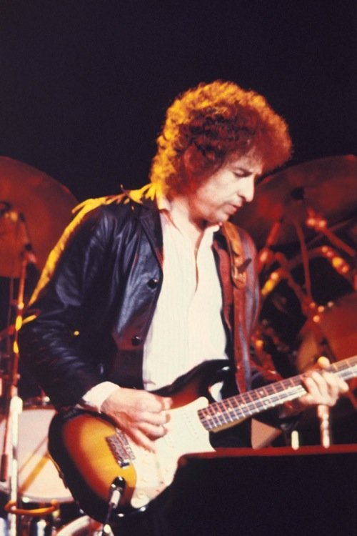 160: Bob Dylan Colour photographs sold with Copyright.